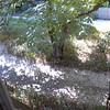 2006-08-24_8184