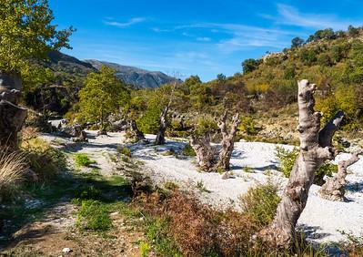 Albanian Landscape, Tepelene, Albania