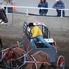Calgary Stampede Chuckwagon Races