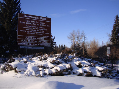 Bowness Park - Winter