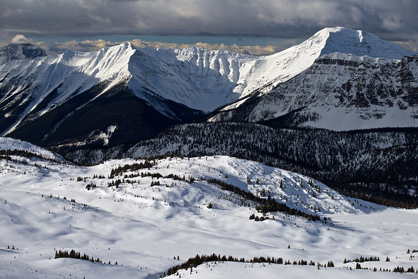 Alberta Winter