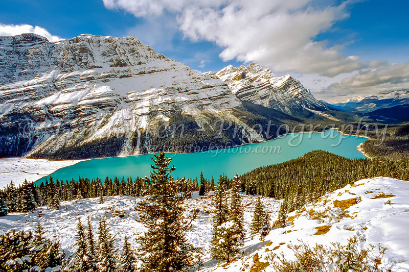 The emerald color of Peyto Lake in winter in Banff National Park, Alberta, Canada.