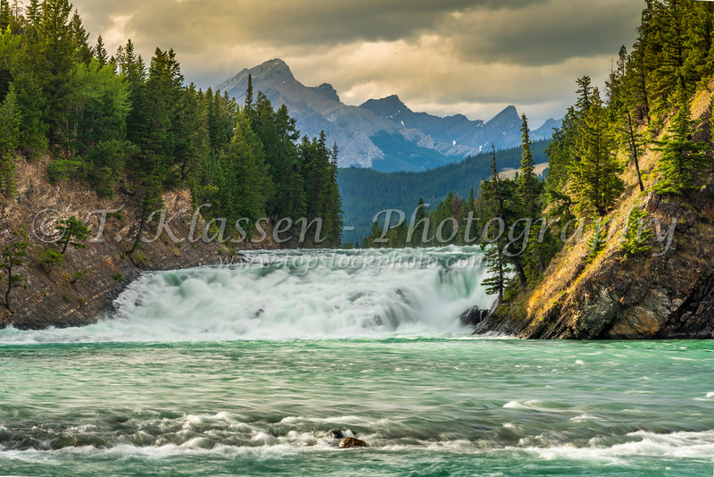 The Bow River Falls at sunset, Banff, Alberta, Canada.
