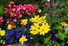 Decorative flowers at the Banff Park Lodge, Banff, Alberta, Canada.