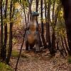 Calgary Zoo's Prehistoric Park 2009