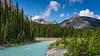 Mountain scenic along the Icefields Parkway, Alberta, Canada.