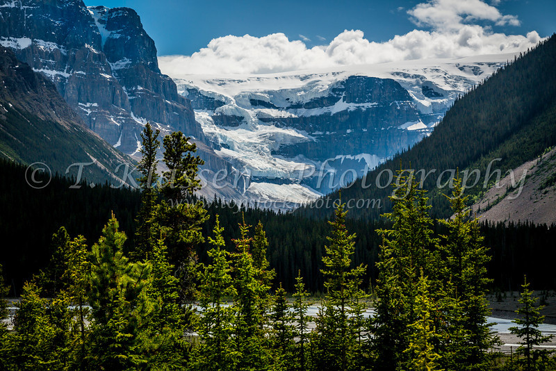 The Athabasca River Valley along the Icefields Parkway in Jasper National Park, Alberta, Canada.