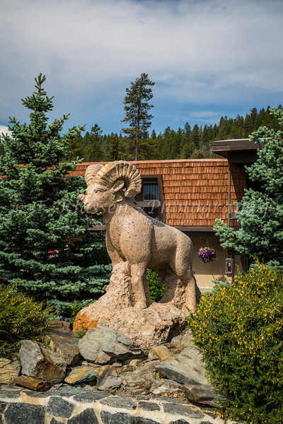 A big horn sheep wood carving in Jasper, Alberta, Canada.