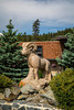 A big horn sheep wood carving in Jasper, Alberta, Canada.