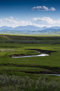 Pekisko Creek and Mountains