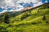 An alpine meadow in Waterton Lakes National Park, Alberta, Canada.