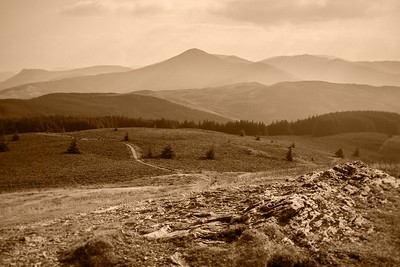 Sun 21st Sep 2014 : Grisedale Pike from Lord's Seat