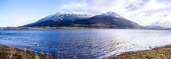 Fri 9th Feb : Skiddaw & Dodd : Snow & Greylags