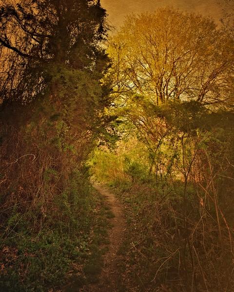 Trail View State Park,<br /> Woodbury, Nassau County, Long Island, New York