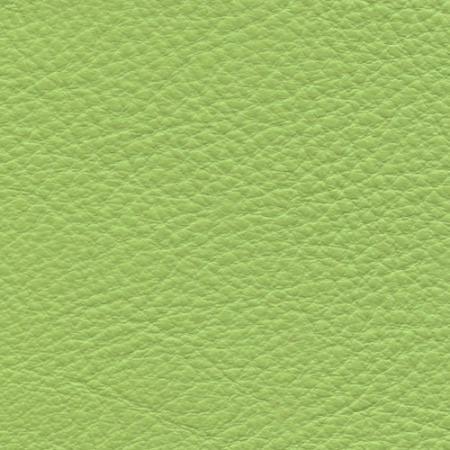 Venom Green
