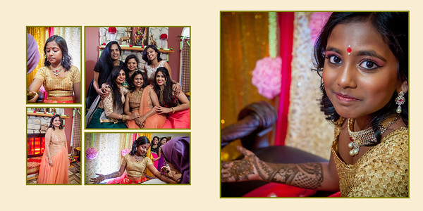 Aryana Saree album_02