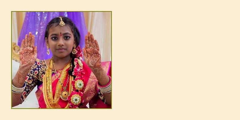 Aryana Saree album_21