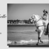 Sample Guestbook - Ana Michelle & Humberto