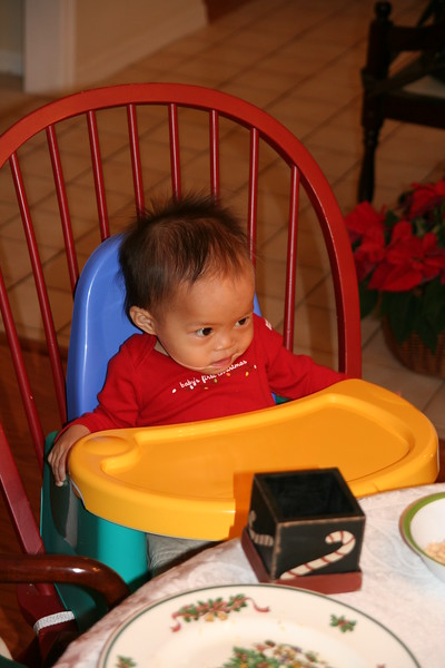 Matthew  in his booster at Christmas breakfast.