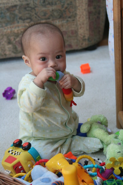 Nicholas attacking the pile of toys.
