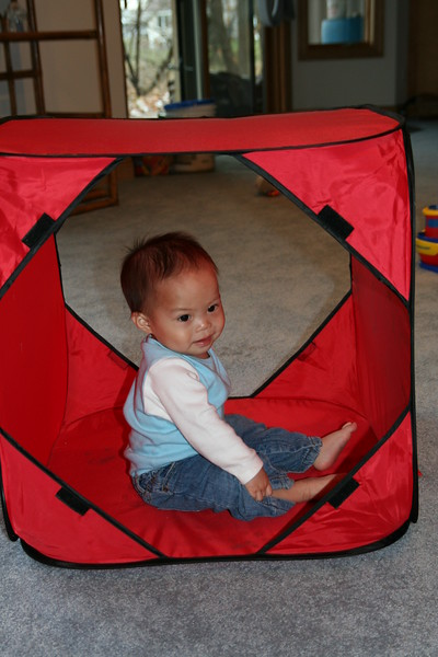 Matthew playing in the dog tunnel.