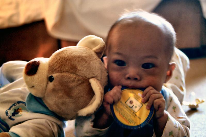 Nicholas and His Bear