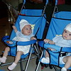 In the Strollers