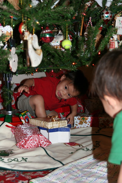 Matthew under the Christmas tree