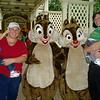 Panicing with Chip and Dale.