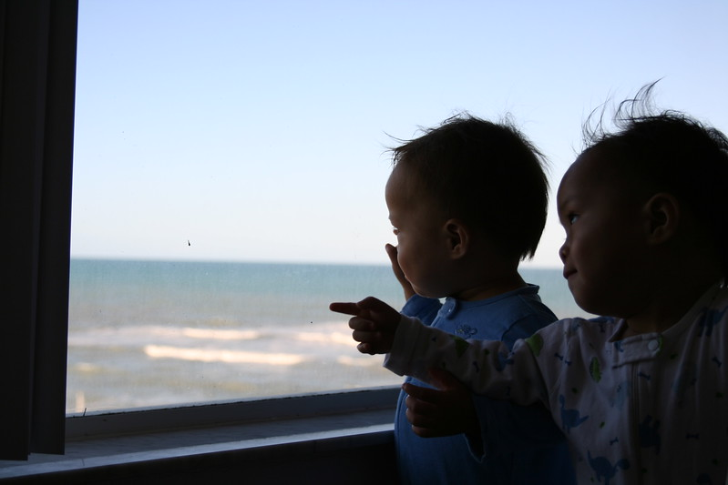 Looking out to sea.