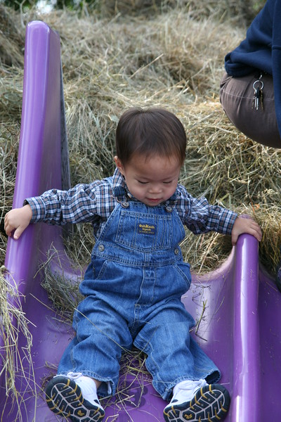 Matthew in his spiffy farmer outfit.