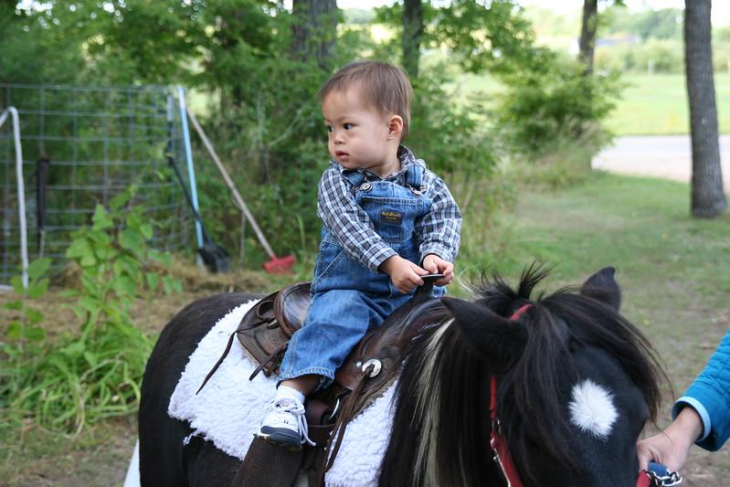 Matthew on the pony.