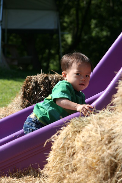 Nicholas on the slide at the orchard.