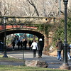 Another bridge in Central park.