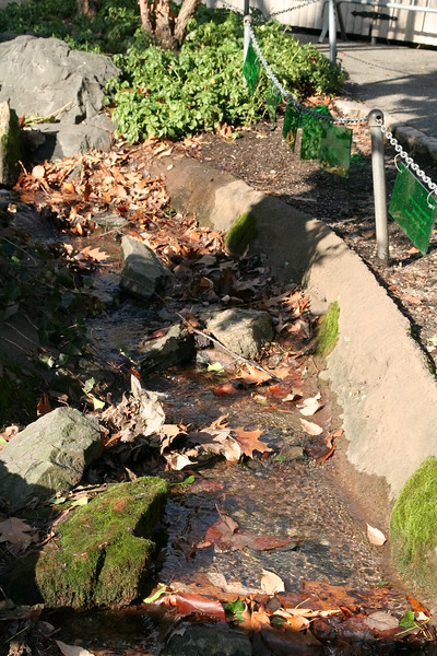 A water flow at the zoo.