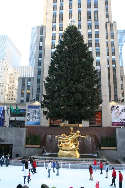 Skating under the tree at Rockefeller Center.