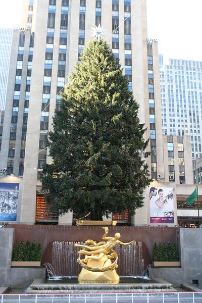 Christmas tree at Rockefeller Center again.