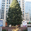 Christmas tree at Rockefeller Center again.