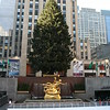 Christmas tree at Rockefeller Center including the rink.