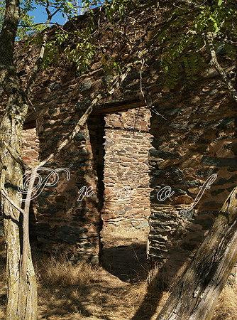 Ruins2984