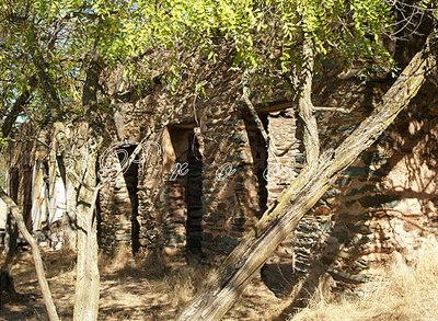 Ruins2983