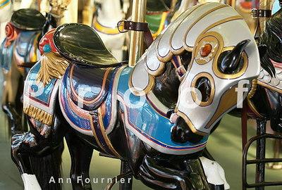 Horse8705