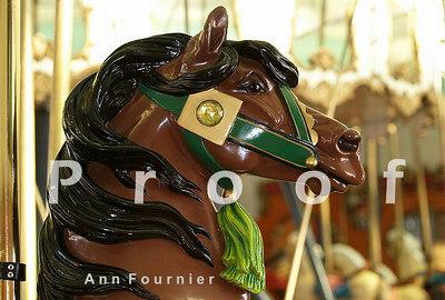 Horse8706