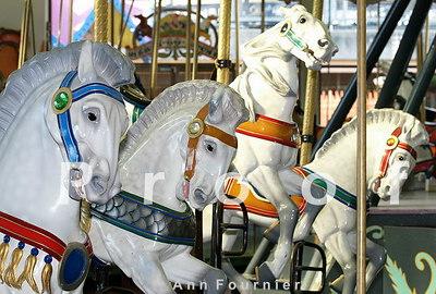Horse8711