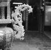 Follow the dragon