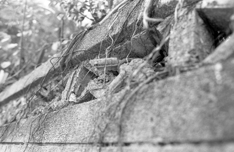 Nikon FT3 - Kodak 5222, 35mm Black & White Film @ ISO 200
