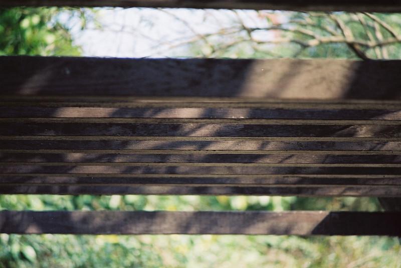 NIKON FT3 - Kodak 200T, 35mm Movie Film @ ISO200