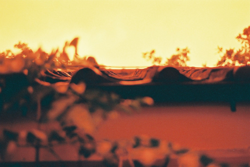 Nikon FT3 - Fuji Xtra 400 35mm Redscale Film @ ISO100