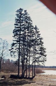 800404_Bornholm-43