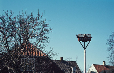 800404_Bornholm-27